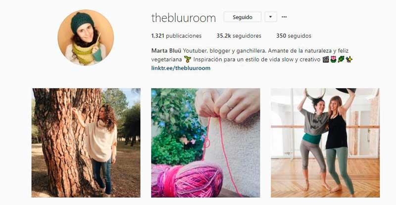 instagram thebluuroom