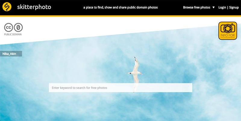 imagenes gratuitas skitterphoto